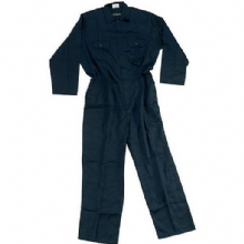 Coverall, overalls